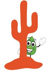 Lima Cactus