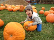Gable picking out a pumpkin