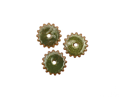 C-Koop Enameled Metal Olive Small Closed Gear 16mm