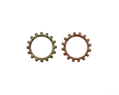 C-Koop Enameled Metal Olive Open Gear 19mm